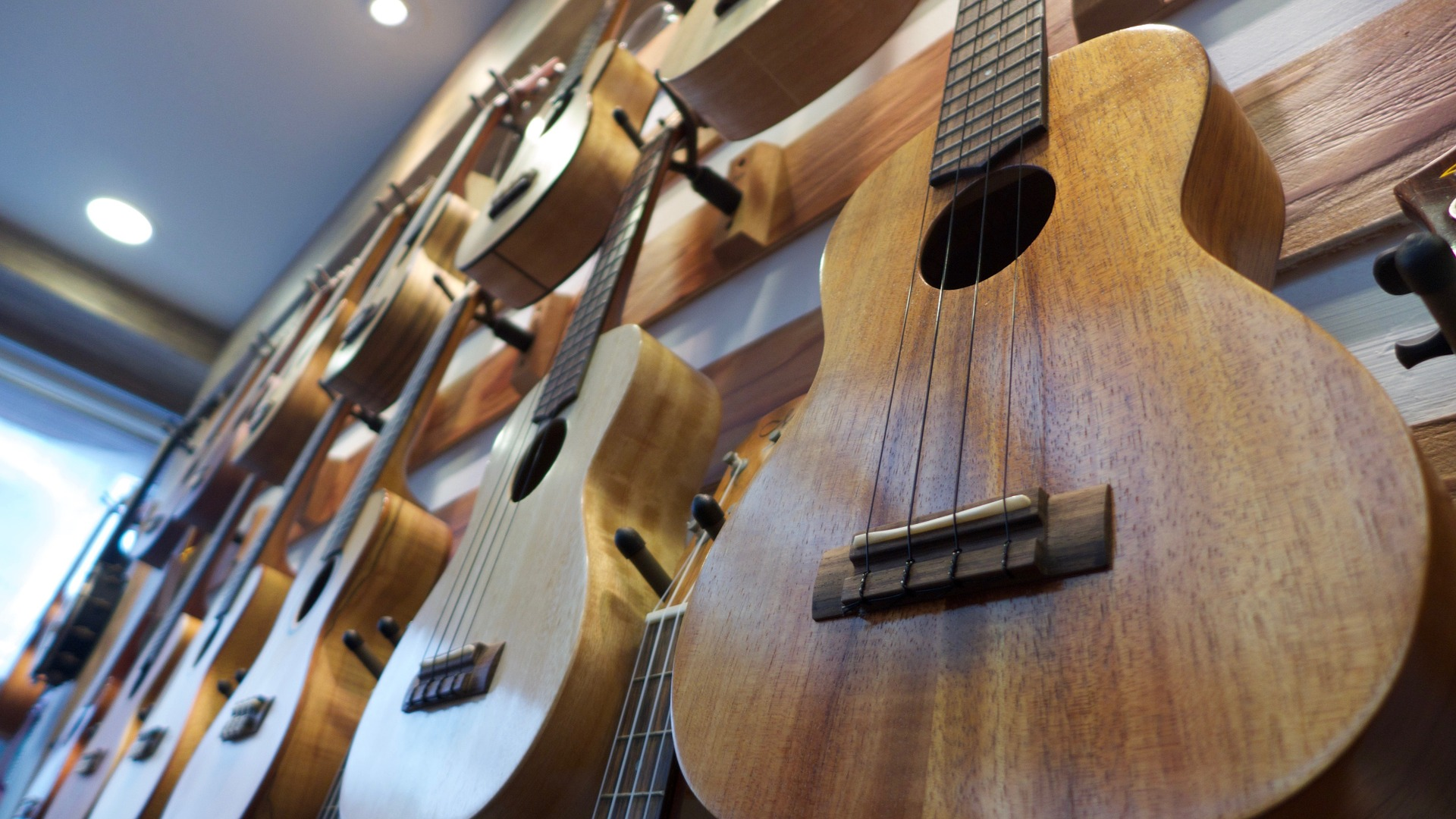 how much ukulele cost
